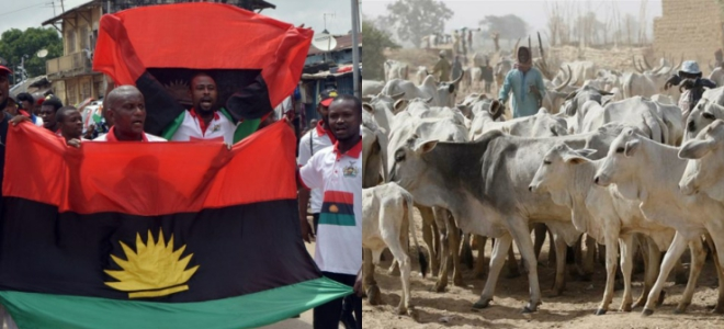 Biafra doesn't need your investment, IPOB replies Miyetti Allah