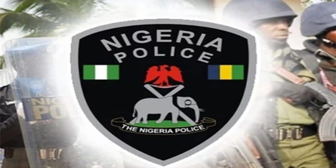 THE NIGERIA POLICE ACT AND WHAT YOU SHOULD KNOW UNDER THAT NEW AMENDED LAW